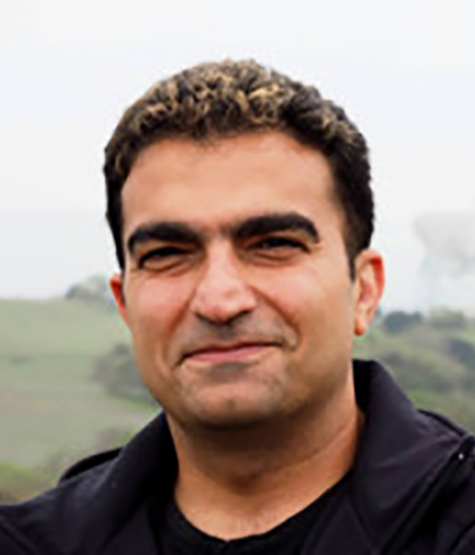 Picture of Bahram Dahi